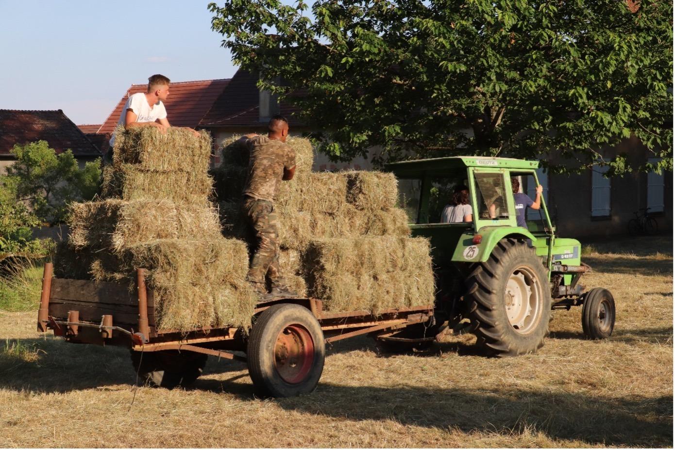 Photo travail à la ferme